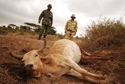 dead cow rangers.jpg